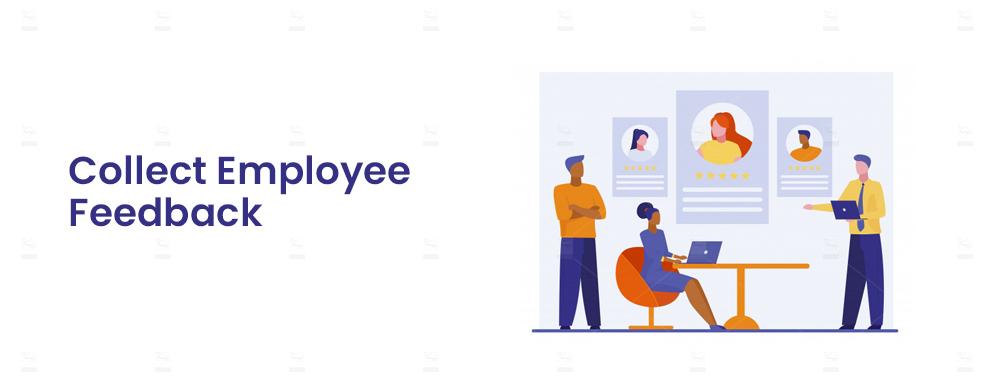 Collect Employee Feedback
