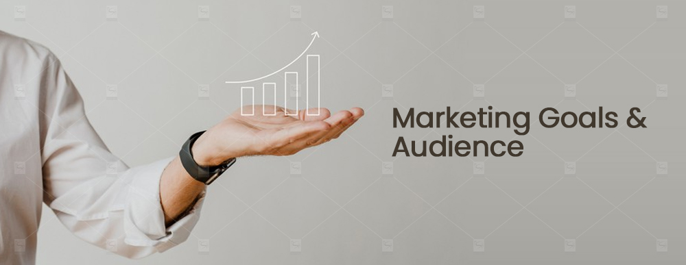 Marketing Goals and Audience