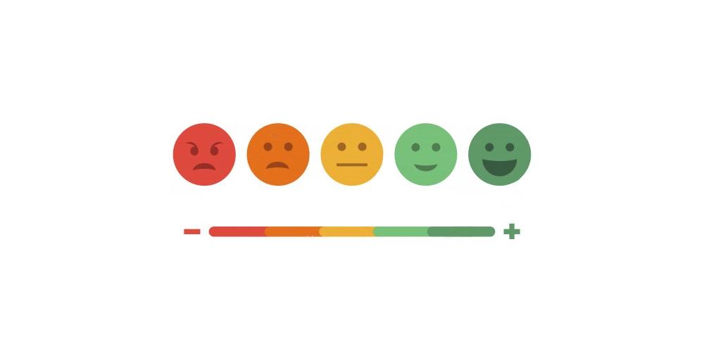 Periodic Customer Feedback Surveys